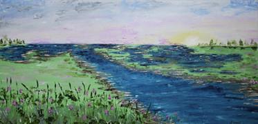 Swamps - Marais 1