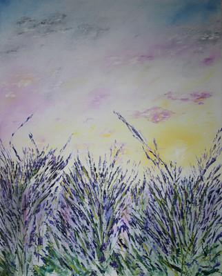 Lavender Sunset - Coucher de Soleil sur Lavandes