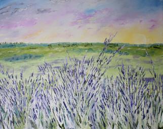Lavender Field - Champ de Lavandes