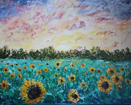 Sun Flowers Field (16in x 20 in) - 275 $