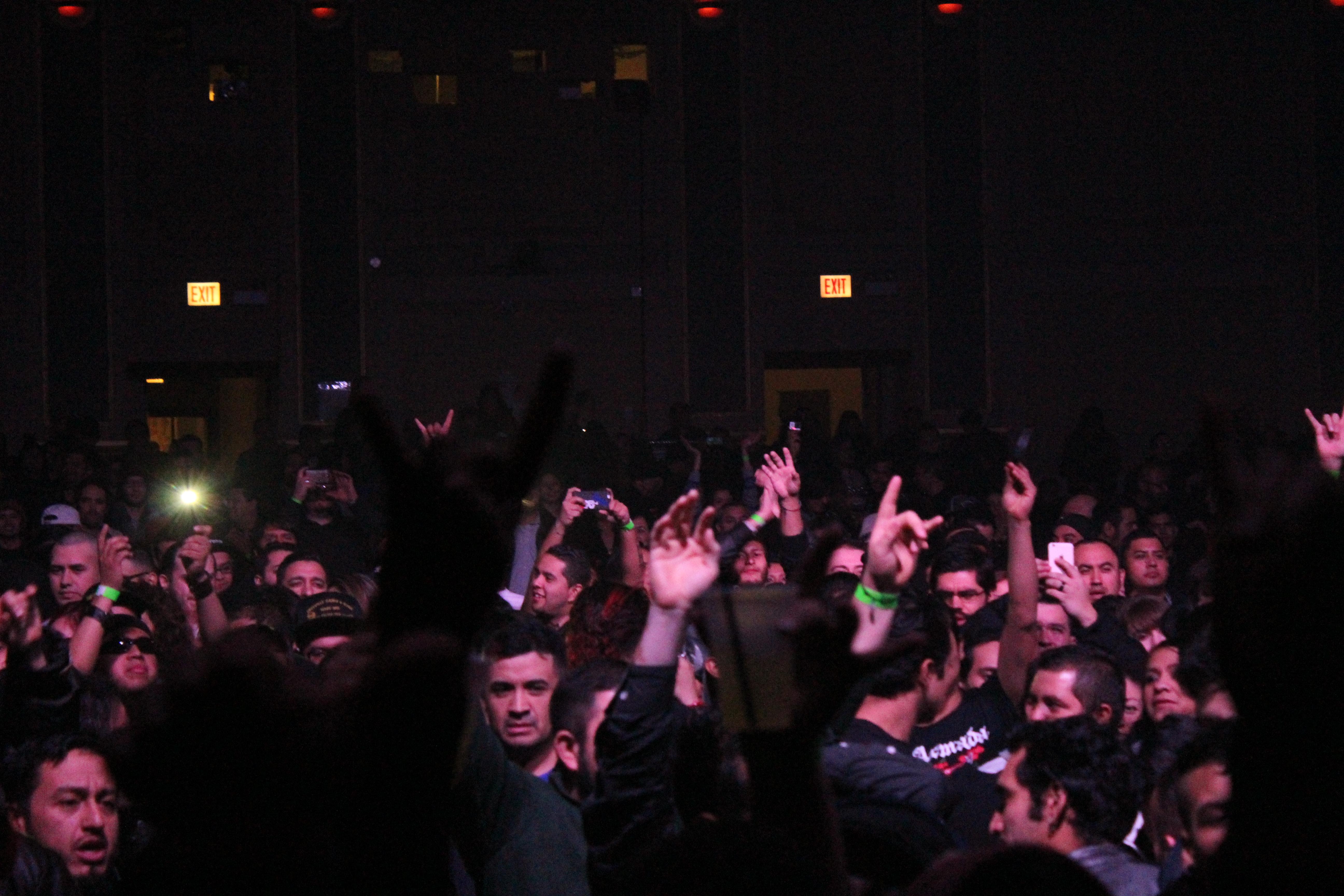 Molotov in Concert