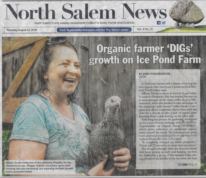 DIG Farm in the News