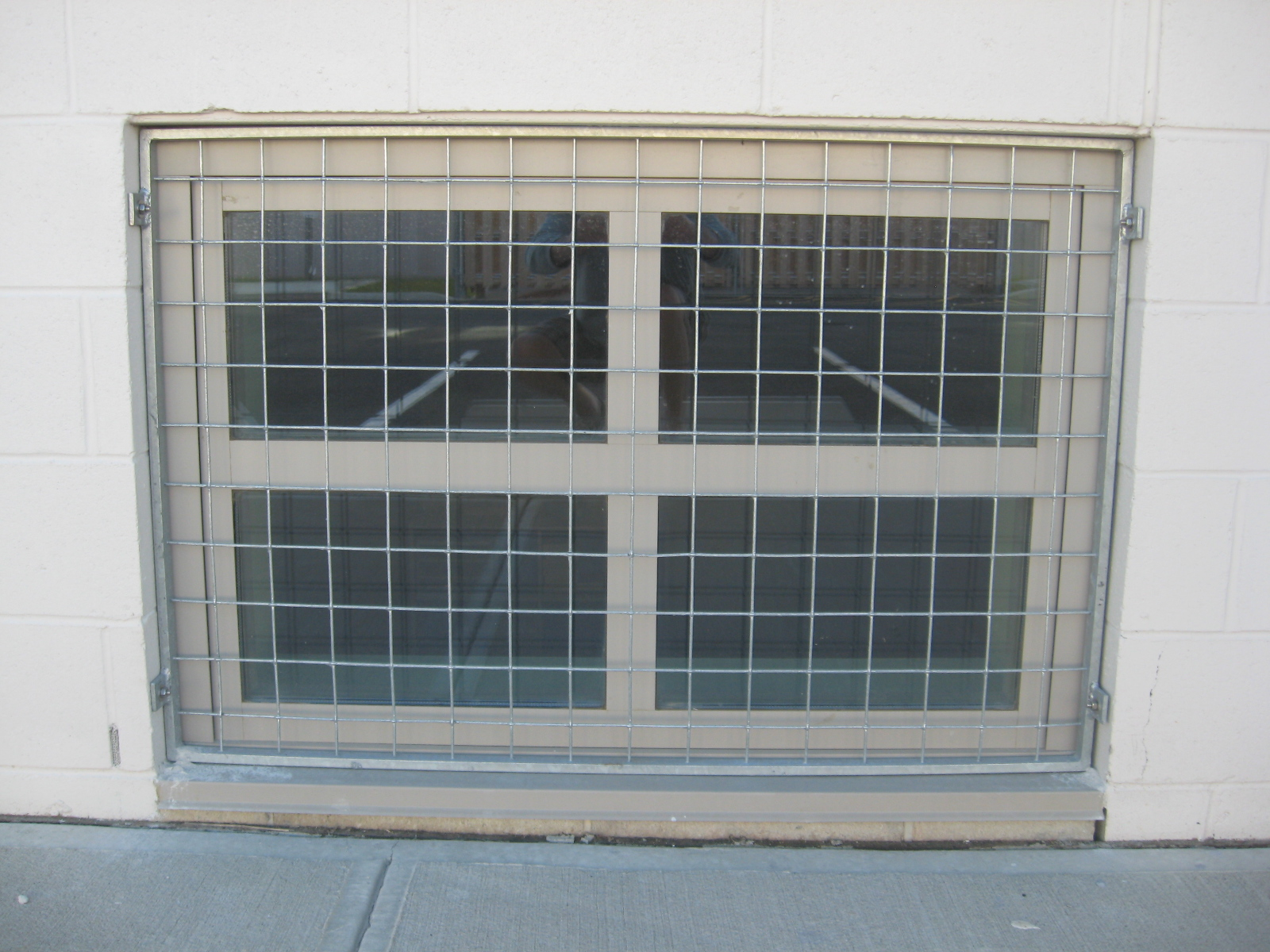 Wire Mesh Fixed Window Guard