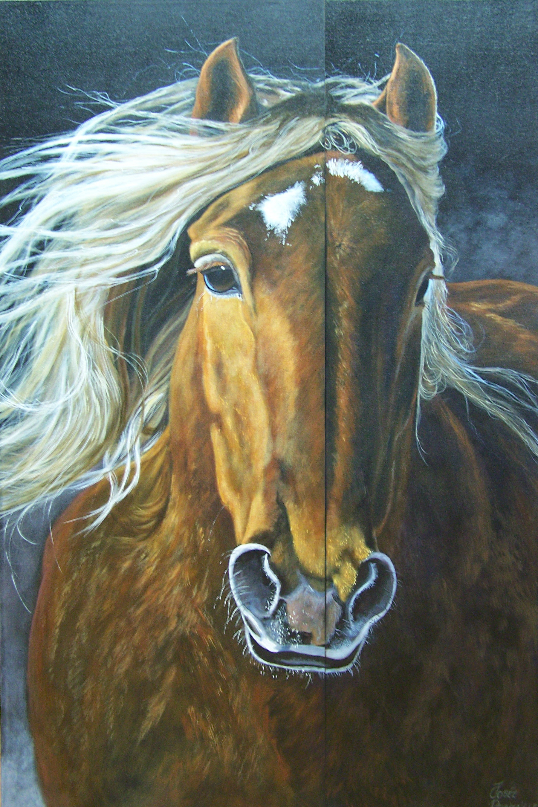 josee robitaille-tygalop