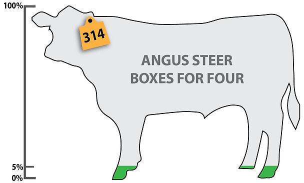 Angus 4 5%-01.jpg