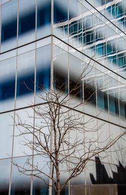 facade New York
