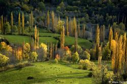 Automne en Aragon