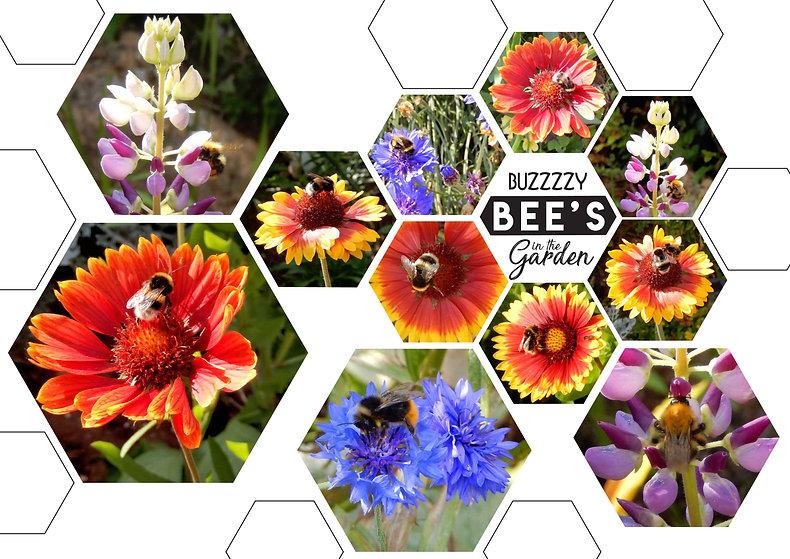 buzy bees.jpg
