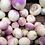 Thumbnail: Pickles de Carottes, Radis, Navets Lactofermentées
