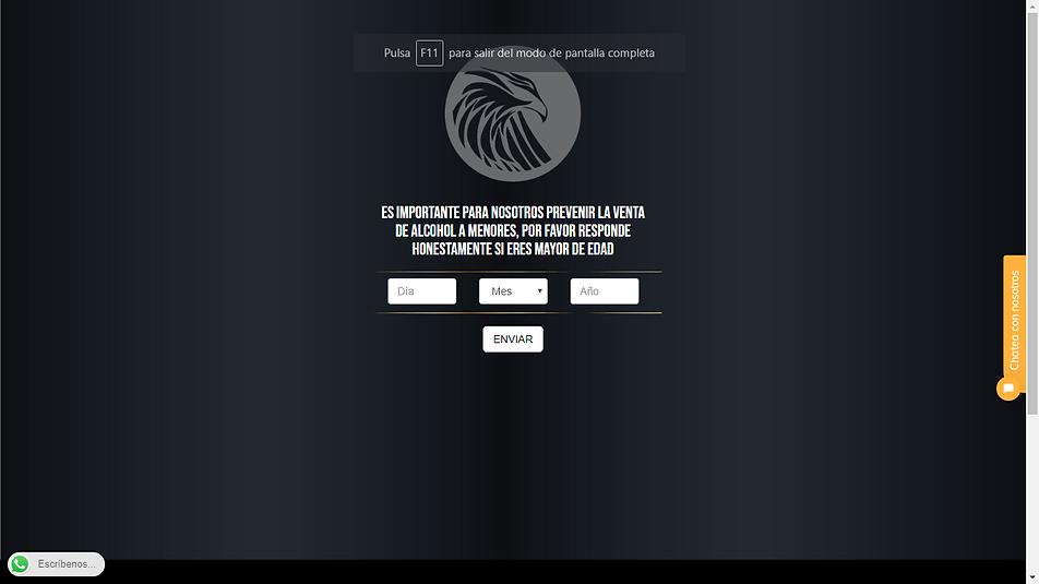 pagina web.png