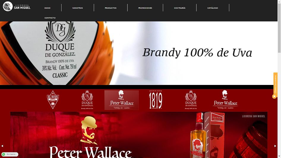 pagina web2.png