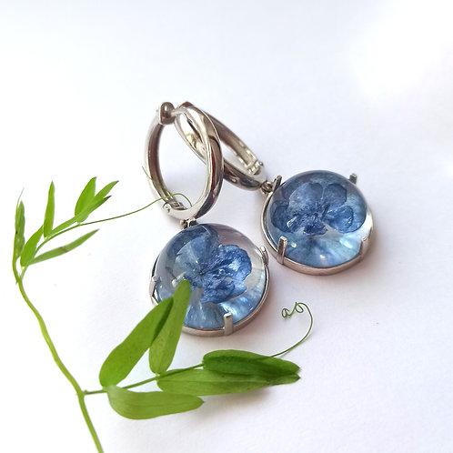 Серебряные конго с голубой гортензией