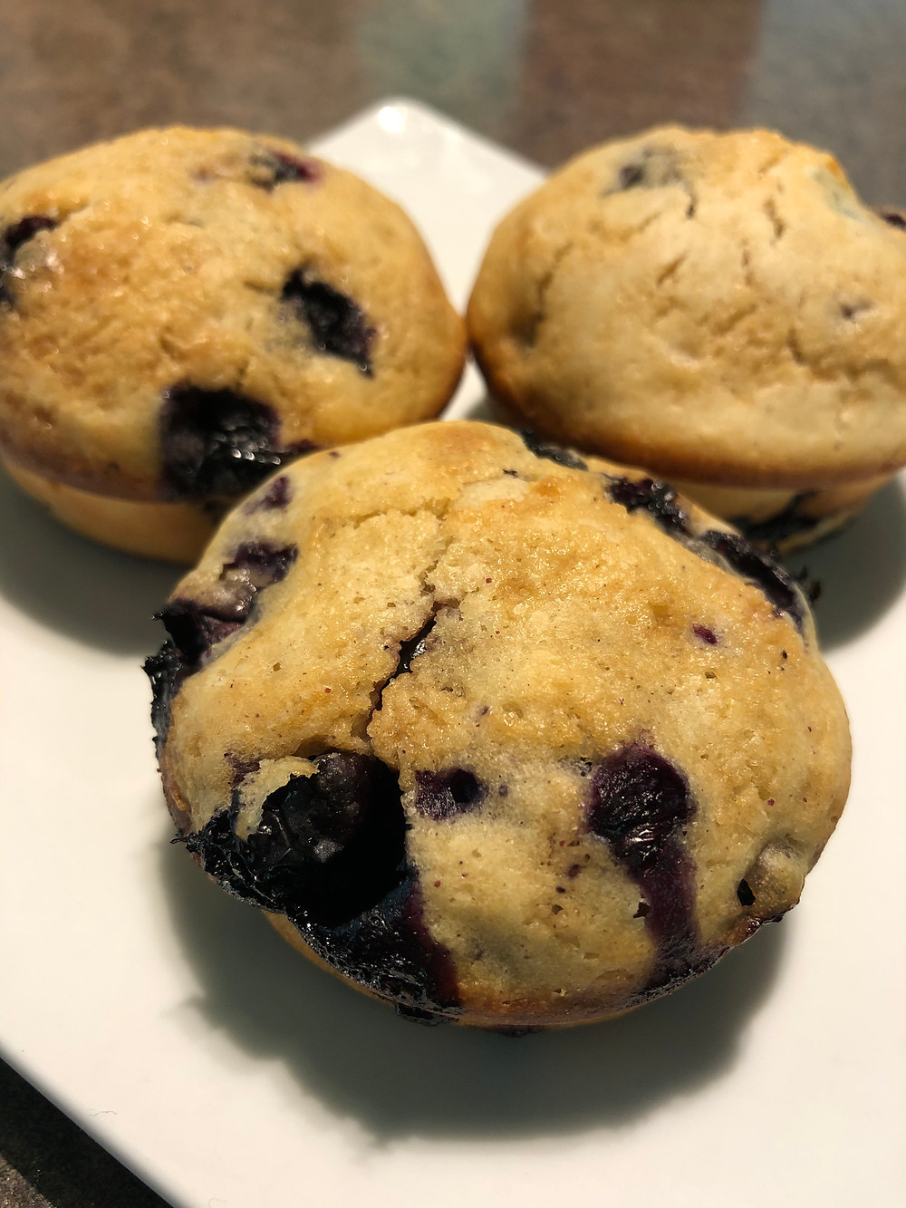 Three blueberry muffins sit on a white plate, ready to eat!
