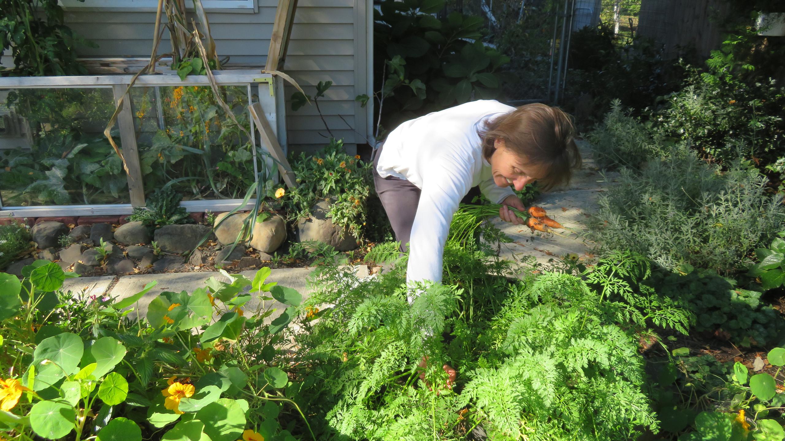 Harvesting...