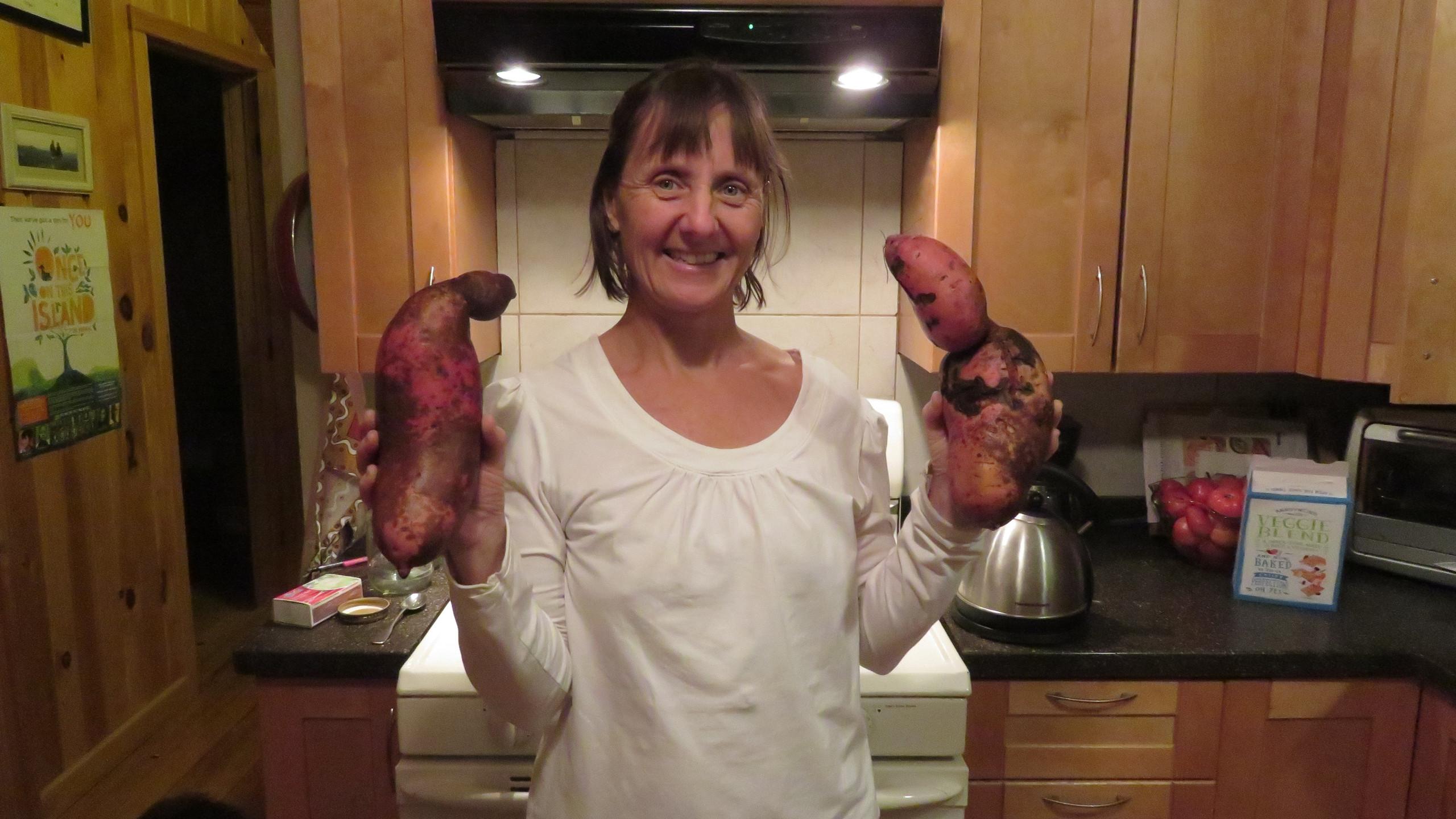 Huge Sweet potatoes