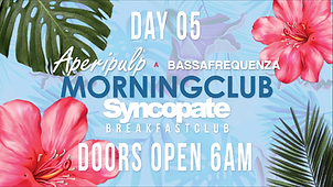 Syncopate Afterhours Day 5 Aperipulp & Bassafrequenza