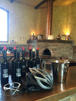 Winery bike tours in New Jersey