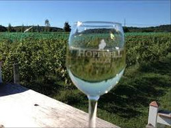 Hopewell Valley Vineyard