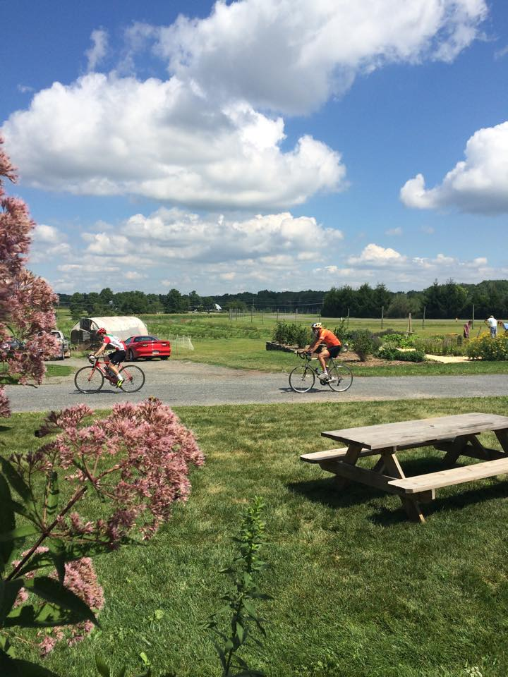 Farm to table bike tours Princeton, New Jersey