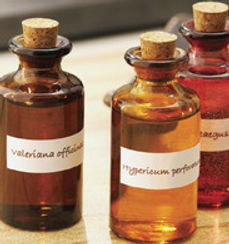 Natural Medicine based on homeopathy.
