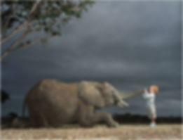 Elephant and child, during stress words are magnified.
