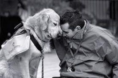 Man and Dog comforting each other.