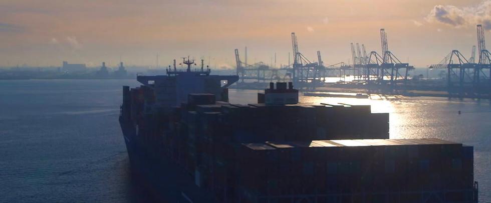 "Cisco ""Rotterdam"""
