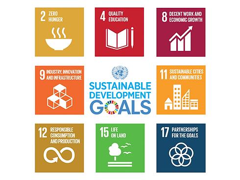 SDG1.png