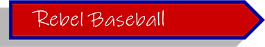 baseball button.png