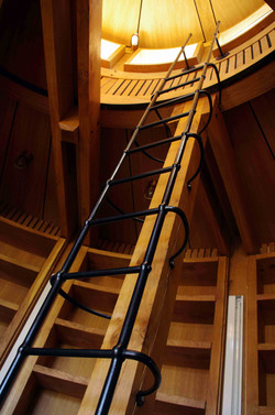 Viewing platform ladder