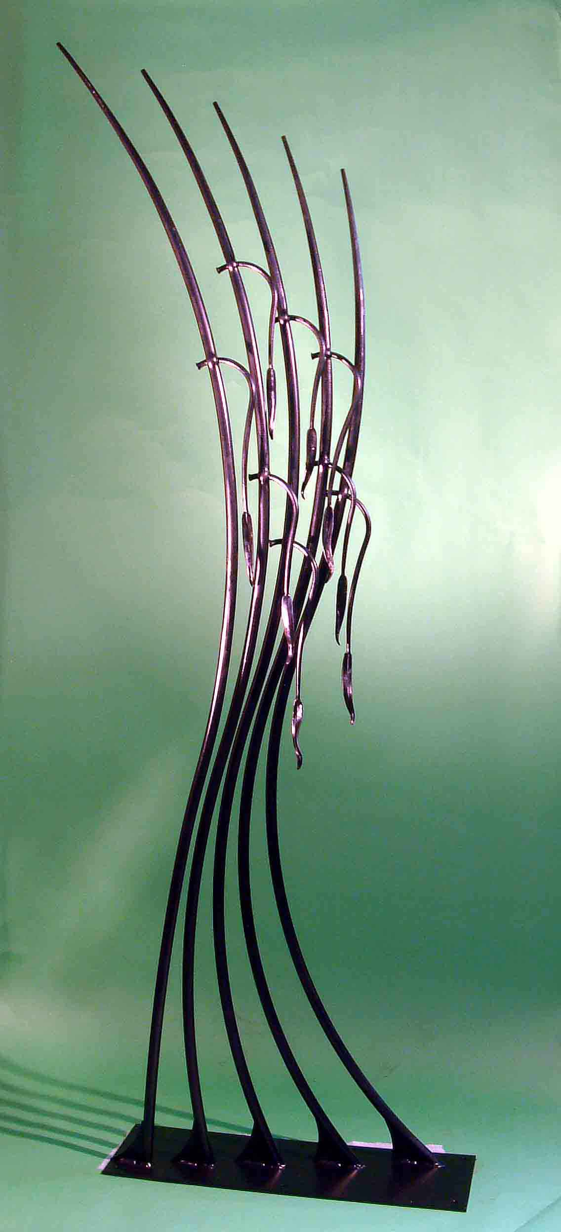 Eucalyptus sculpture