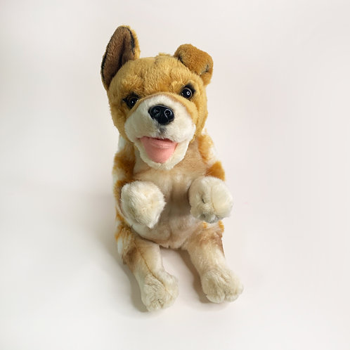 Jimmy Plush Toy