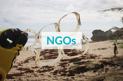 NGOs2.PNG