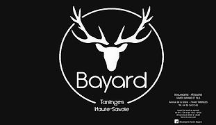 BAYARD1.jpg