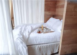 Insta Worthy Eco Hotels: The Hidden, Paris