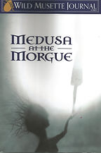 Medusa Book Cover.jpg
