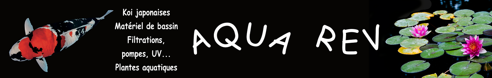 Panneau-Aqua-Rev-500x80-demi-2019-HD.png