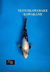 matsukawabake (1).jpeg