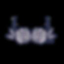 logo1_1.2.20.png