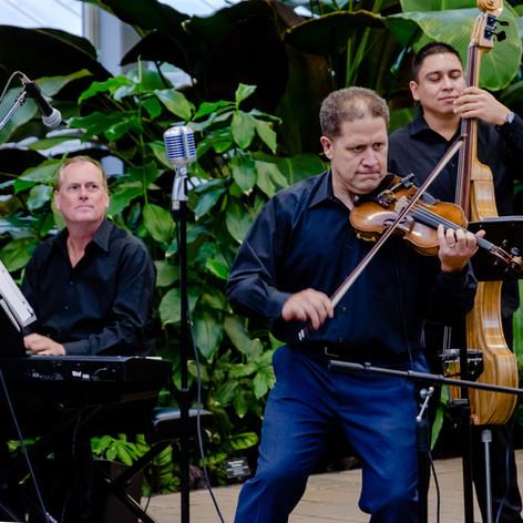 Conjunto at Garfield Park Conservatory, Chicago