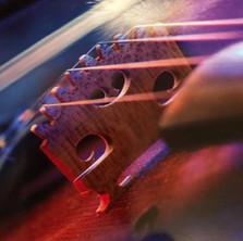 James' violin