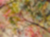SummerScentedBreeze_36x48-wix.jpg
