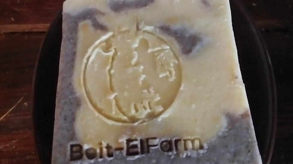 Ginger Bread Goat Milk Soap