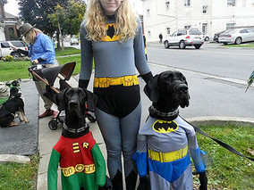 Costumed canines get their day
