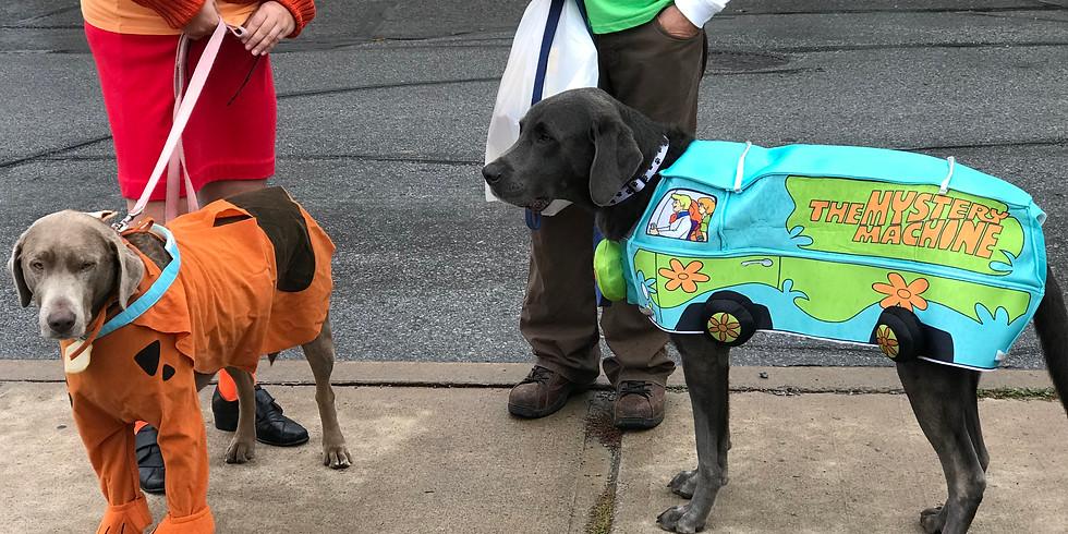 3rd Annual Canine Costume Contest & Puppy Promenade