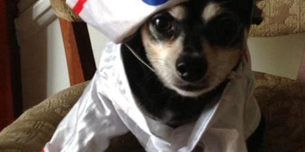 Canine Costume Contest & Puppy Promenade