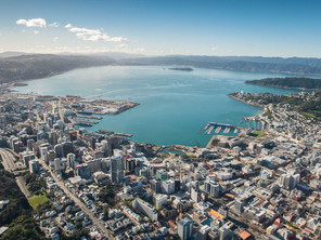 Interview with Wellington Investment Specialist
