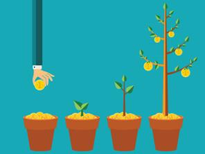 How Successful Investors Predict Capital Growth