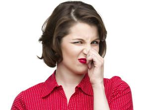 Removing Odour in Wellington Rental Properties