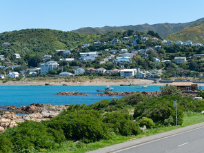Investor Insights   Island Bay